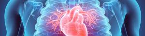 Cardiac Studies
